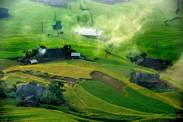 Not only Mu Cang Chai, Hoang Su Phu in the rice season is also full of enchanting