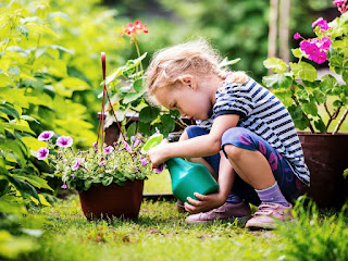 A blonde little girl in a ble & white striped shirt crouched down and watering a pot full of purple flowers.