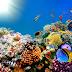 Abstrak Mengenai  Potensi Sumber Daya Laut Indonesia