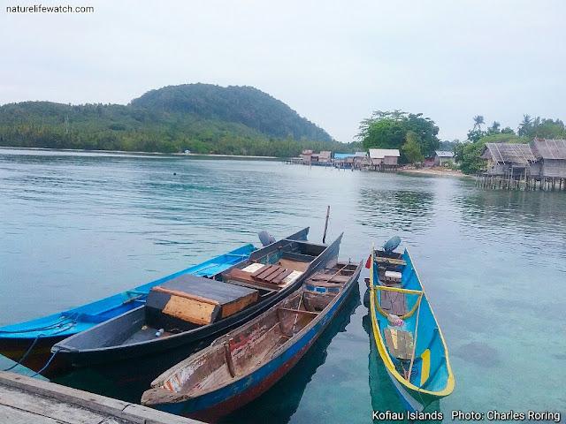 wooden boats in Raja Ampat that belong to North Maluku's fishermen