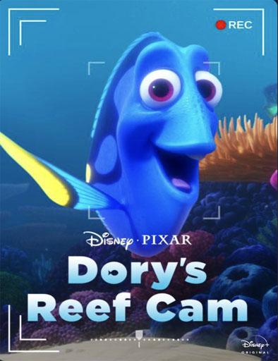pelicula La cámara de arrecife de Dory (2020)