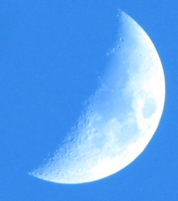 הירח ביום