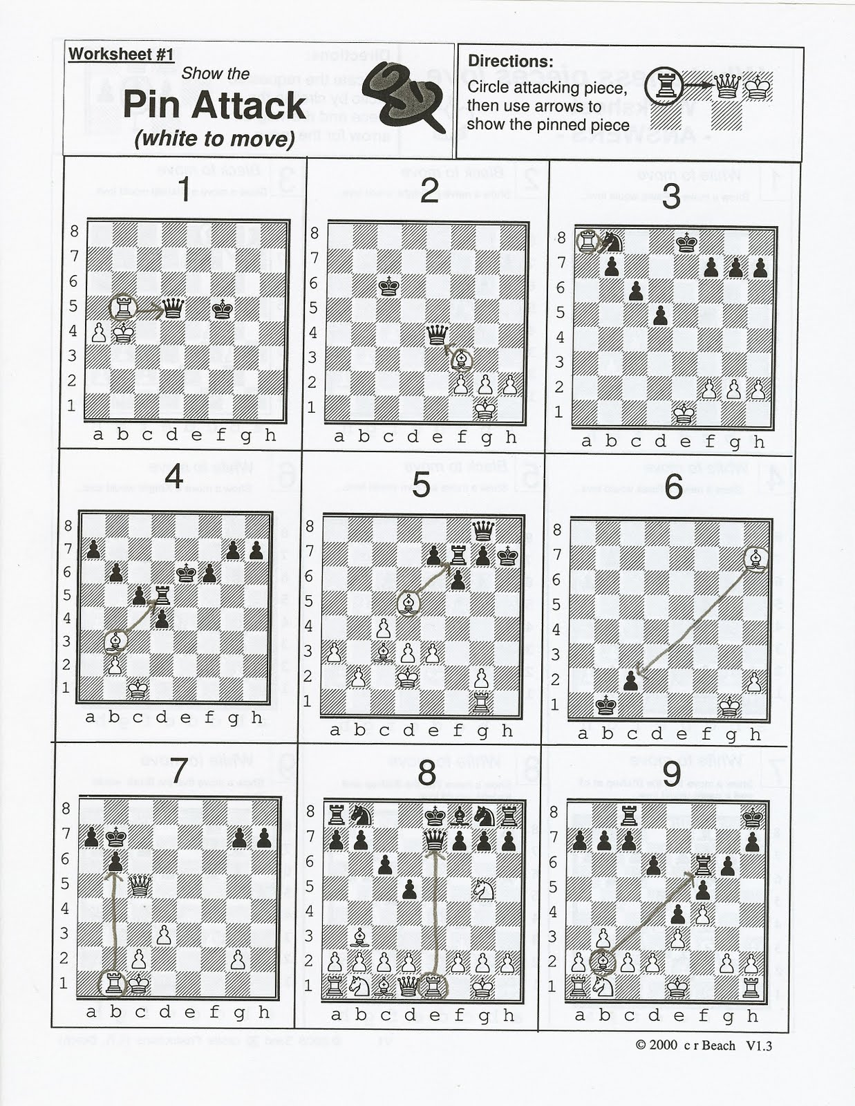 Chess Puzzles Worksheet
