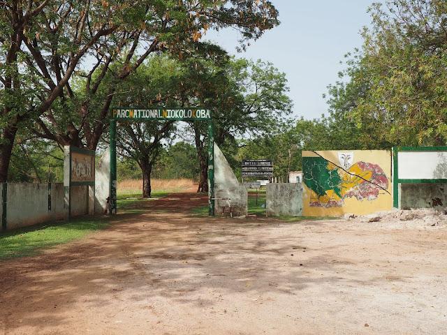 Parc, animaux, visite, tourisme, sauvage, niokolo, LEUKSENEGAL, Dakar, Sénégal, Afrique