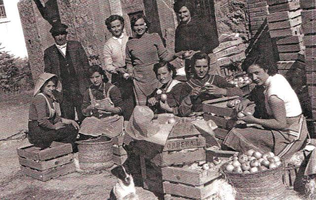 mozas-torrebaja-valencia-triando-manzanas