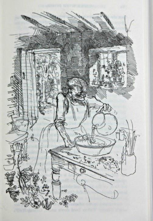 Rosie book with cider