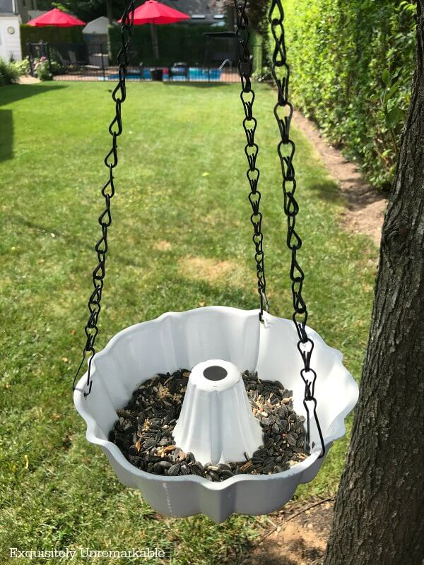 Bundt pan bird feeder hanging in backyard