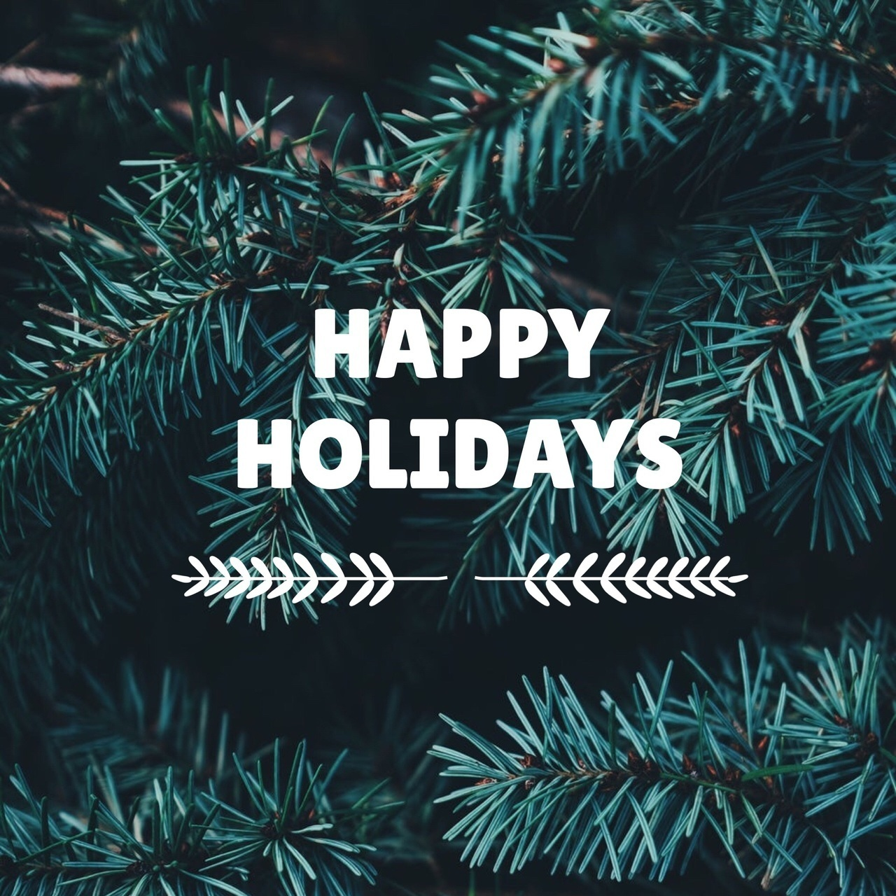 happy holidays dp images