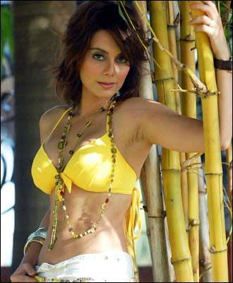 Minissha Lamba | Best Handpicked Hot and Sexy Pics of Minissha Lamba