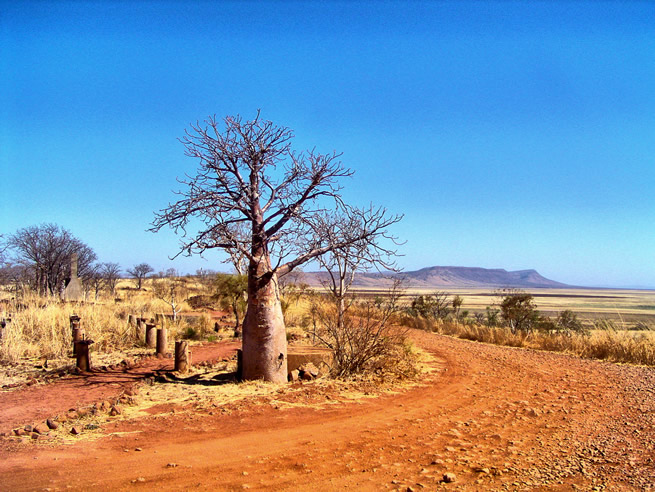 Arid climates, Old Telegraph Station Hill near Wyndham, Kimberley, Western Australia