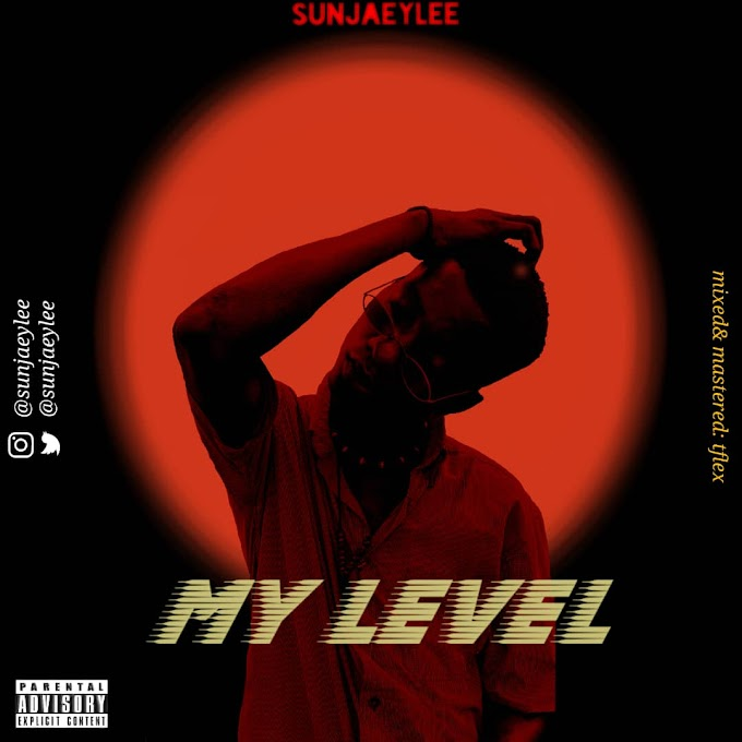 [Music] Sunjaeylee - My Level