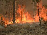 Skogbrann i Queensland, Australia, 2010. Foto: 80trading40. Lisens: CC by-sa 3.0