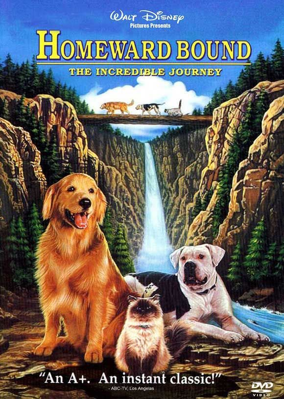Homeward Bound: The Incredible Journey [1993] [DVDR] [NTSC] [Latino]
