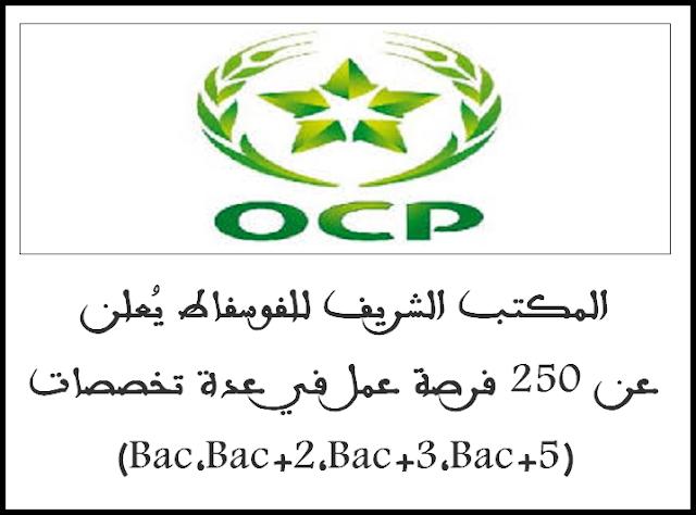 المكتب الشريف للفوسفاط يُعلن عن 250 فرصة عمل في عدة تخصصات (Bac,Bac+2,Bac+3,Bac+5)