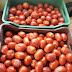 Αισχροκέρδεια...Πάνω από 2 ευρώ το κιλό οι ντομάτες!