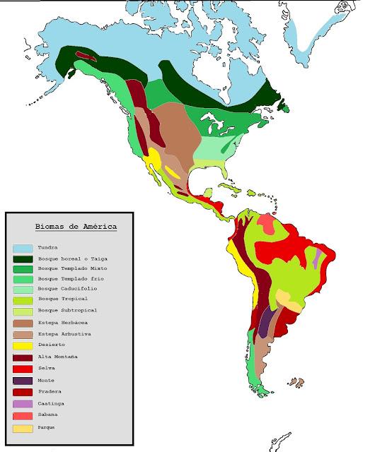 Resultado de imagen para MAPA DE biomas de america