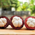Kulit Manggis : Obat Alami untuk 34 Penyakit