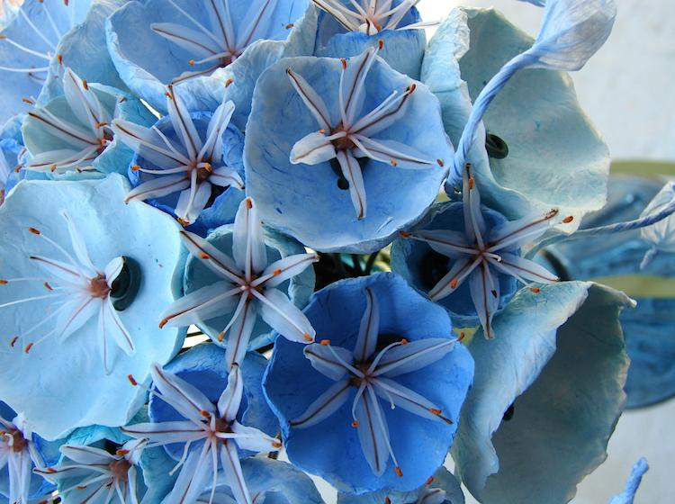 Asfodelo e fiori di carta per un bouquet ecologico turchese acquamarina