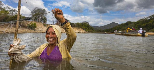 Una mujel utilizando una red para pescar en las aguas del río Rupununi en Guyana.FAO/Brent Stirton