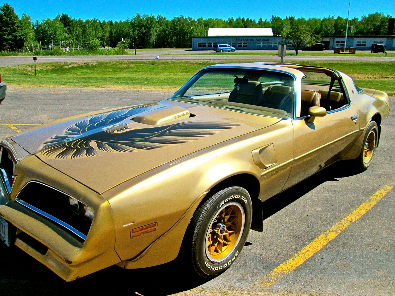 Photos Of Antique Cars 1978 Pontiac Trans Am Firebird 1950