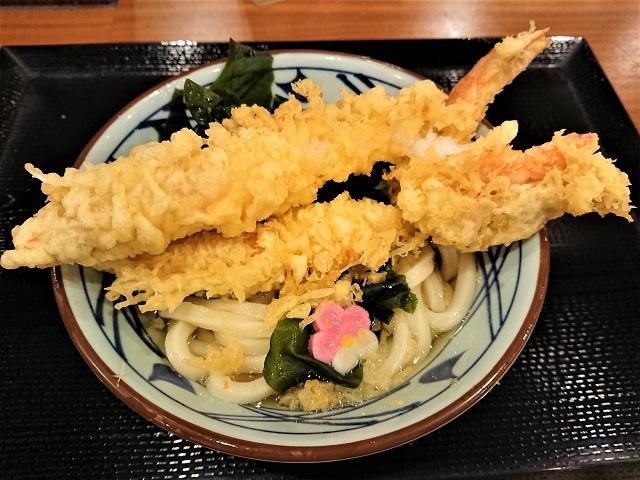 丸亀製麺 佐倉店 期間限定 寿大海老うどん