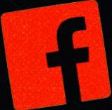 المئات من ضباط الشرطة النشطين والسابقين هم جزء من مجموعات Facebook المتطرفة