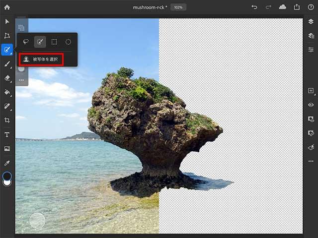 AdobeSenseiがiPadに降臨・被写体を選択