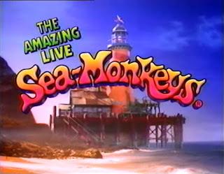 Amazing Live Sea-Monkeys