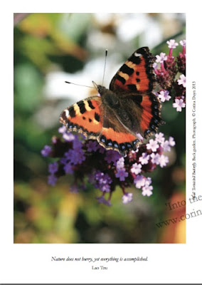 page from Into the Light  by Corina Duyn with image of butterfly and quote: Nature does not hurry but everthing is accomplished- by Lao Tzy