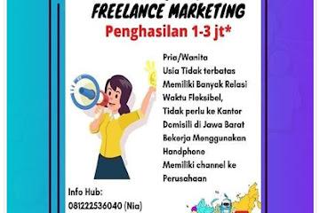 Lowongan Kerja Bandung Freelance Marketing Robonesia