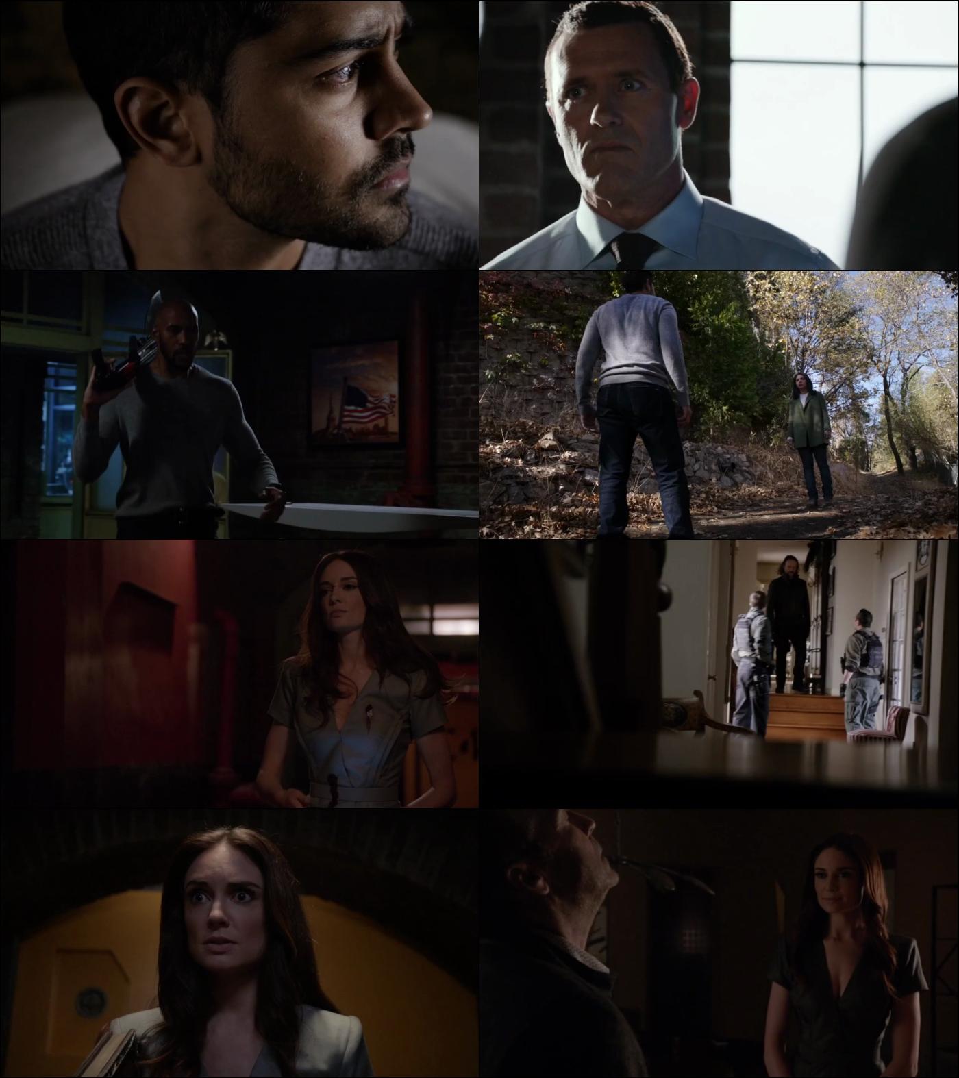 Agents of SHIELD Temporada 4 720p Latino