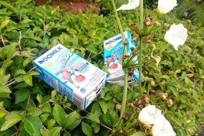 bagus uht atau susu bubuk?