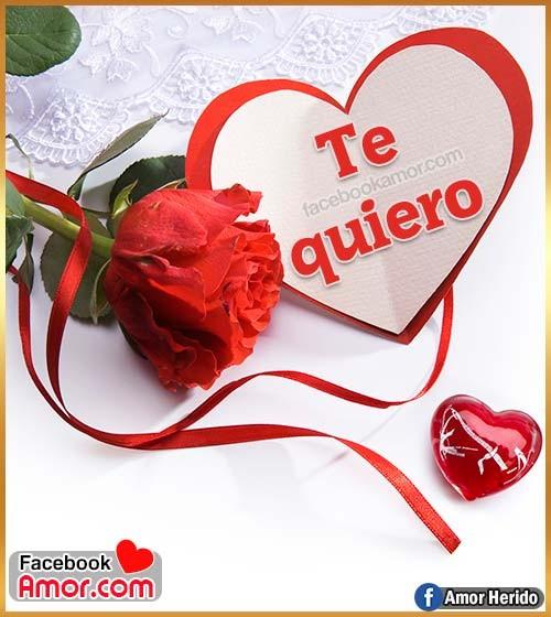 rosa roja te quiero