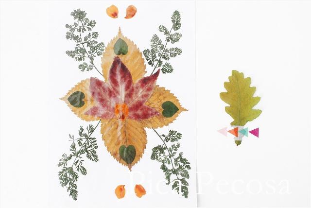 como-hacer-tarjeta-con-hojas-secas-de-otoño-diy-06
