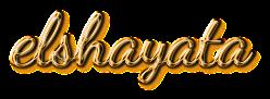 مرحبا بكم في مدونة elshayata
