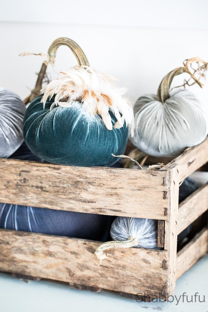 velvet pumpkins feathers