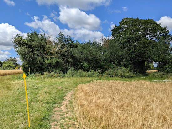 Stay on Kimpton bridleway 51 following the line of the yellow arrow