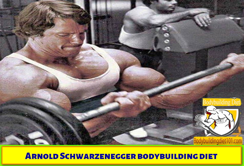 Arnold Schwarzenegger believed in taking a potential and dynamic diet. He avoided the junk food all the time and he preferred the food with