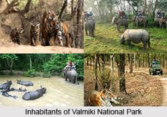 VALMIKI WILDLFE SANCTUARY , BIHAR  IMAGES, GIF, ANIMATED GIF, WALLPAPER, STICKER FOR WHATSAPP & FACEBOOK