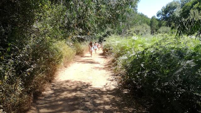 Caminho para a praia fluvial em grupos de jovens