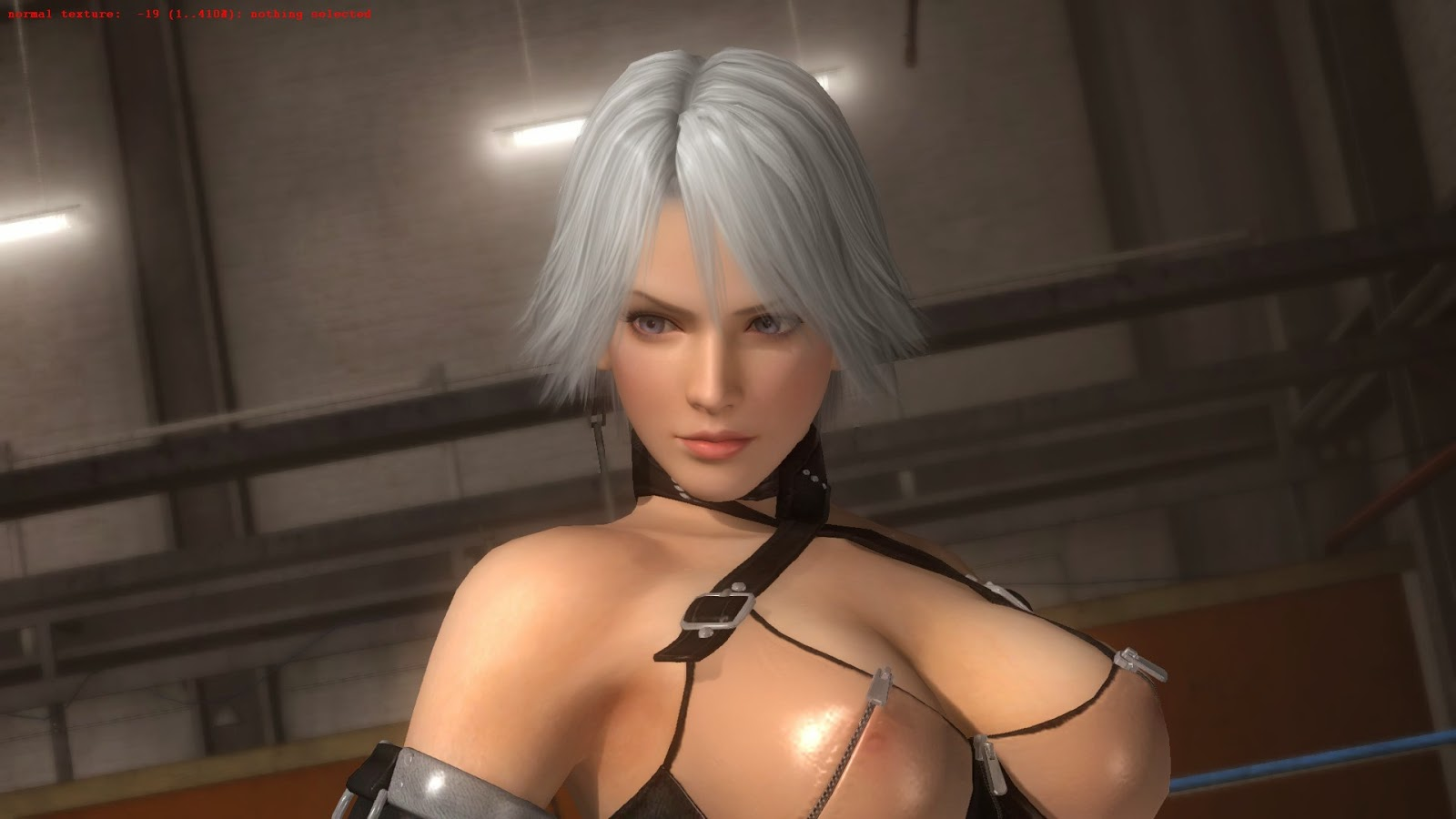3D Sexy Game sexy game pc wallpaper - 3d hot and sexy pc game picture