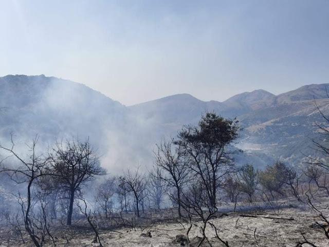 Φιλιάτες: Σε 4 φωτιές ταυτόχρονα επιχείρησε η Πυροσβεστική Υπηρεσία Θεσπρωτίας (+ΦΩΤΟ)