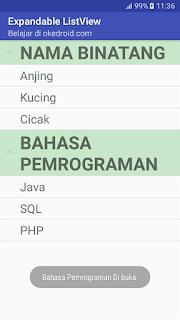 Contoh Hasil Aplikasi ExpandableListView Android
