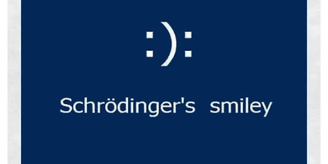 What is Schrodinger's smiley ?