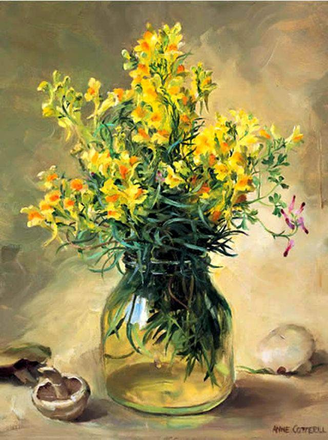 Maher Art Gallery Anne Cotterill