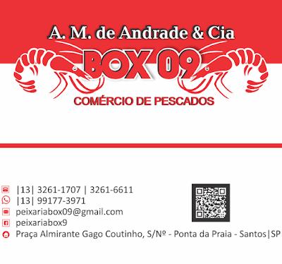 Guia13 - Peixaria Box 09 - A.M de Andrade & Cia
