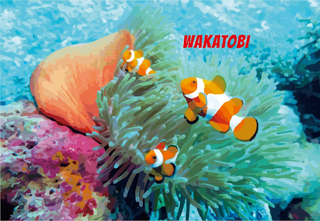 Destinasi Wisata Taman Nasional Wakatobi