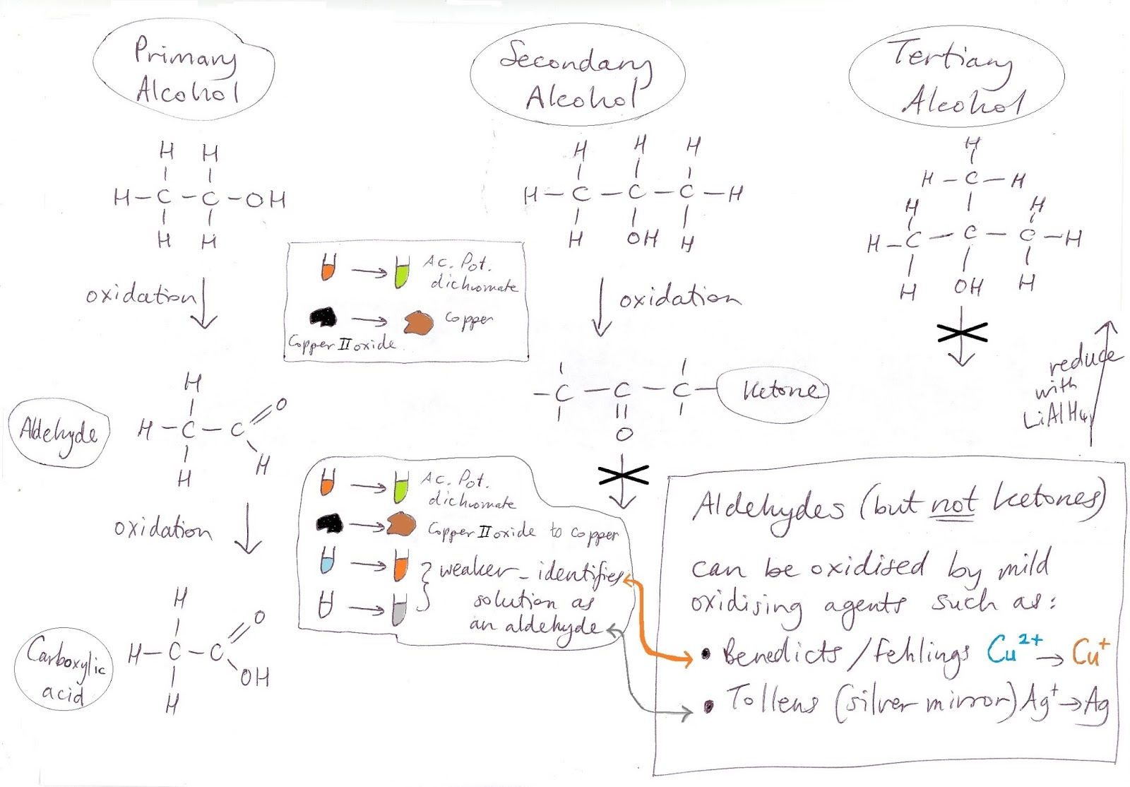 Primary Alcohols/Secondary Alcohols /Aldehydes/Ketones Chart