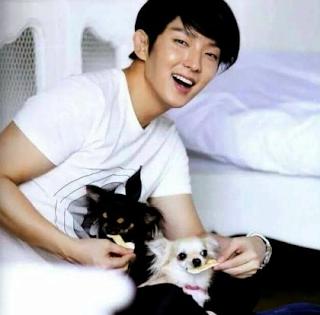 Nama Anjing Park Seo Joon dan Aktor Korea Selatan lainnya Memelihara Anjing