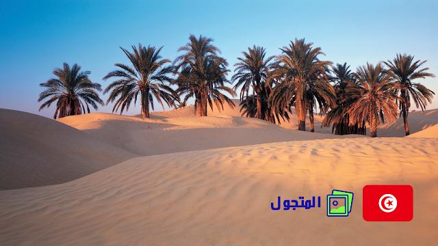الصحراء التونسية